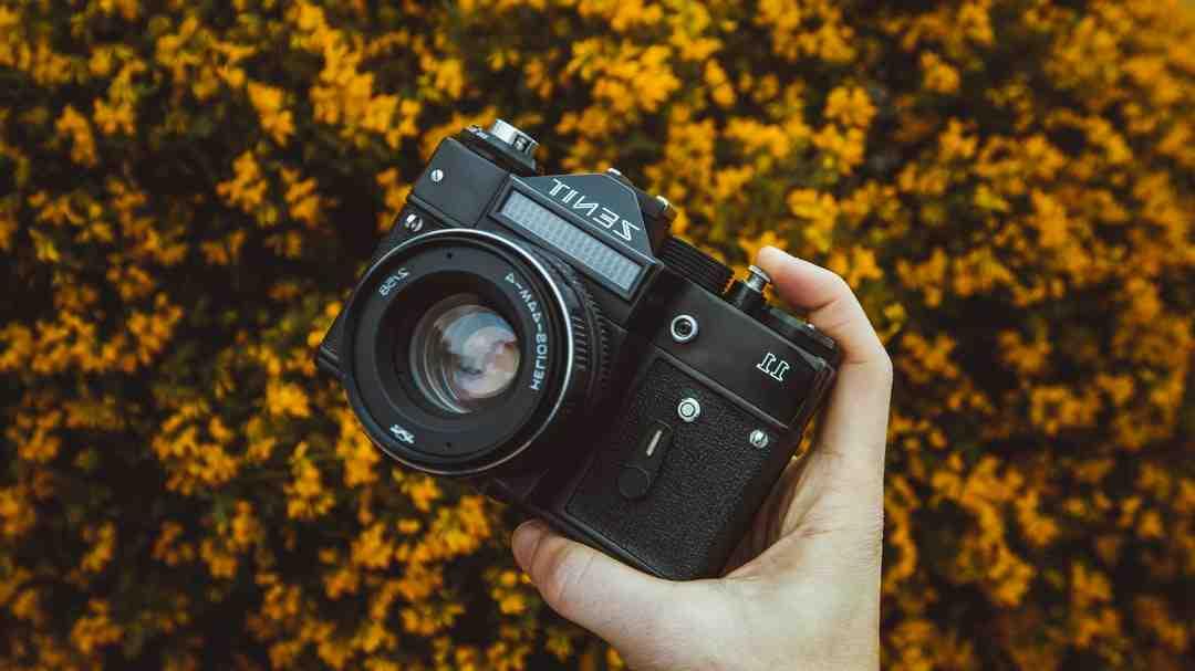 Quel appareil photo choisir pour un débutant?