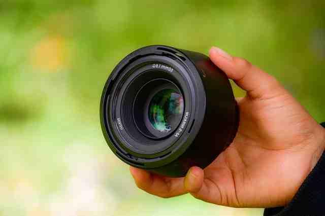 Quel objectif choisir pour photographier les oiseaux ?